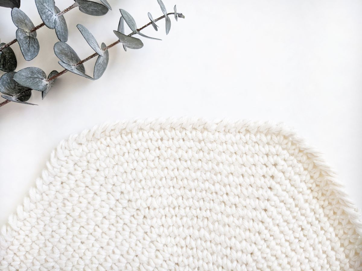 up close look of the crochet placemat with a crab stitch border and a plant in the background